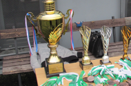 hana-turnaje.png